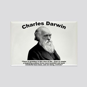 Darwin: Evolved Rectangle Magnet